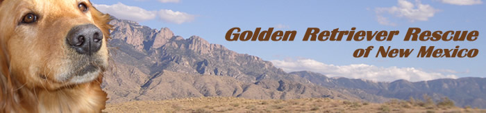 Golden Retriever Rescue of New Mexico